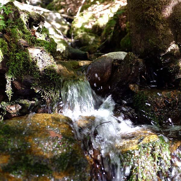 petit ruisseau à montgoutoux
