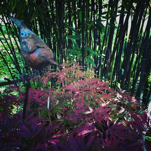 l'oiseau de fer du jardin
