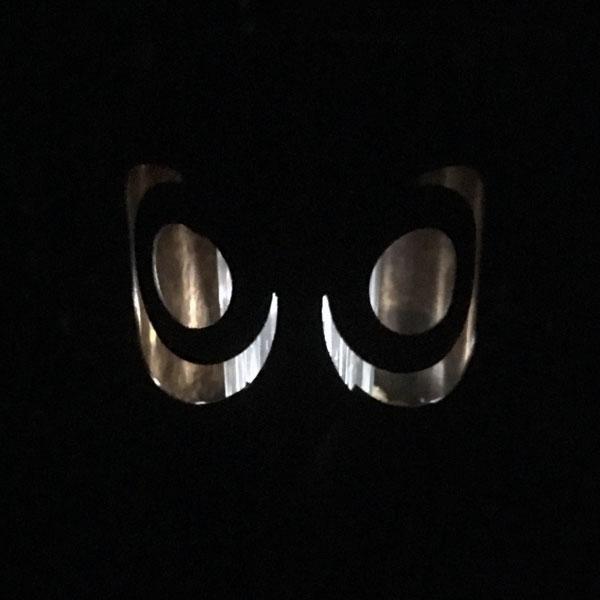 les yeux de la chouette dans la nuit