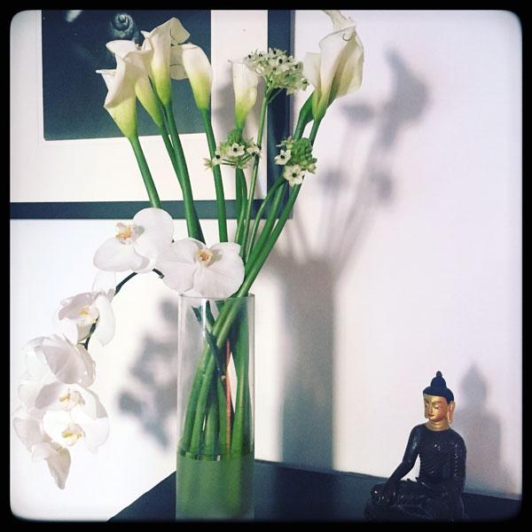 lumière du matin sur ce petit bouquet