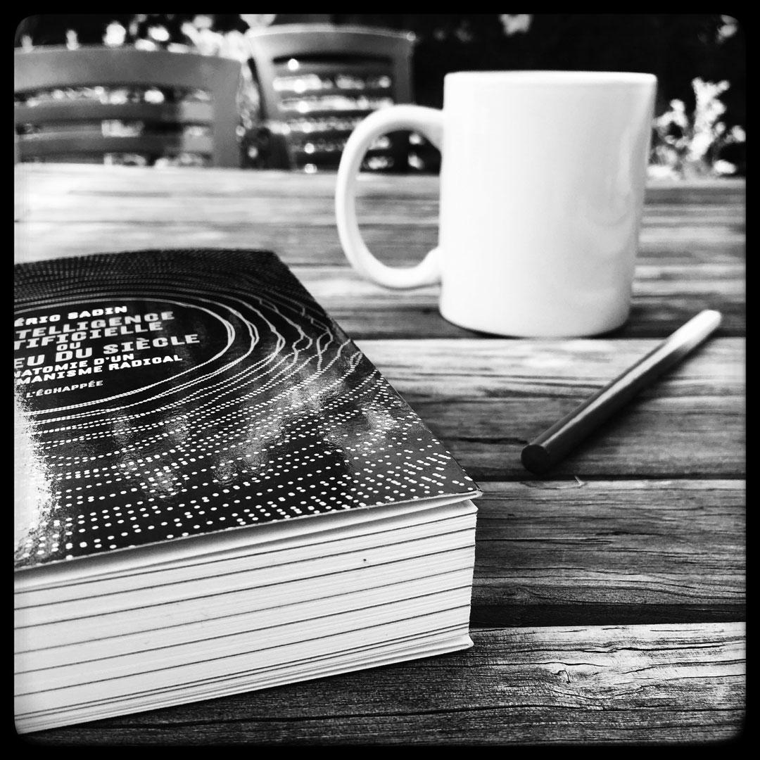 lecture du matin à la fraîche sur le digital par éric sadin